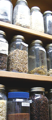 Herbs in storage jars
